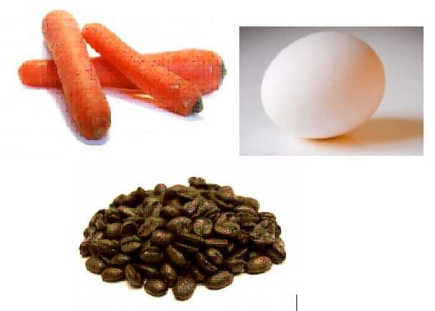 carrot-egg-coffeebean